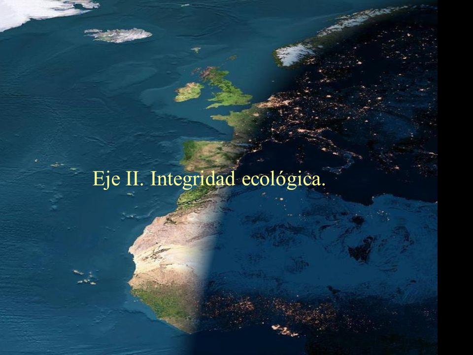 Eje II. Integridad ecológica.