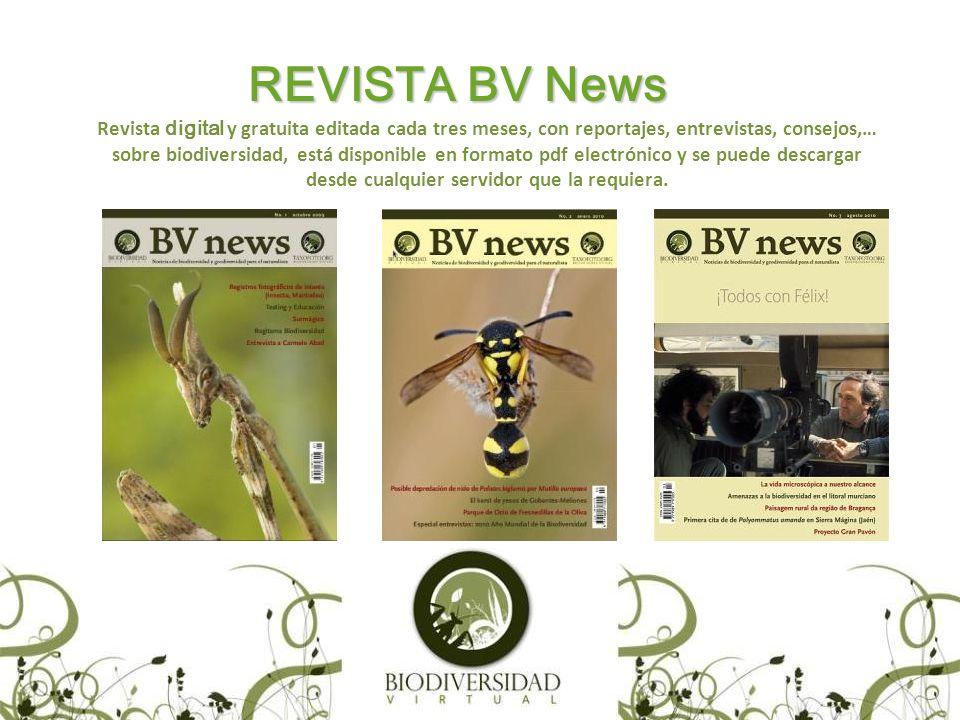 REVISTA BV News Revista digital y gratuita editada cada tres meses, con reportajes, entrevistas, consejos,… sobre biodiversidad, está disponible en formato pdf electrónico y se puede descargar desde cualquier servidor que la requiera.