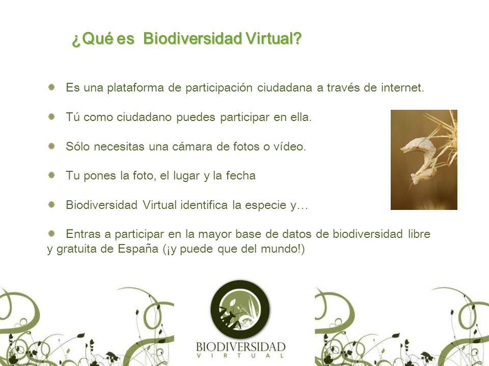 ¿Qué es Biodiversidad Virtual. Es una plataforma de participación ciudadana a través de internet.