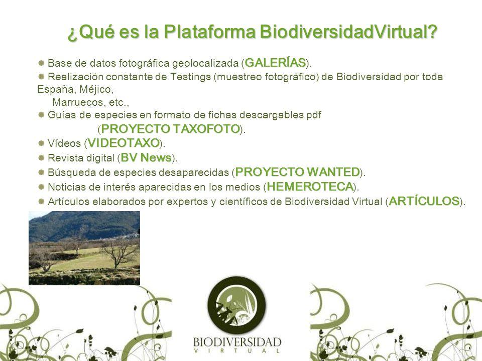 ¿Qué es la Plataforma BiodiversidadVirtual.