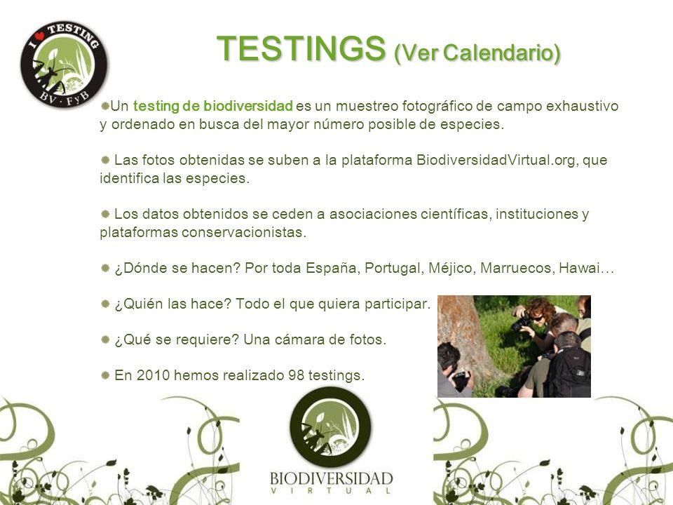 Potencial de la experiencia de realizar testing de biodiversidad: Combinación con otras actividades: talleres, cursos, conferencias, charlas, debates,… Complementa activismo de tipo proteccionista.