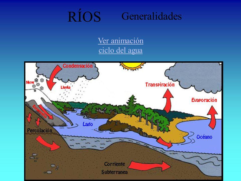 RÍOS Generalidades Ver animación ciclo del agua