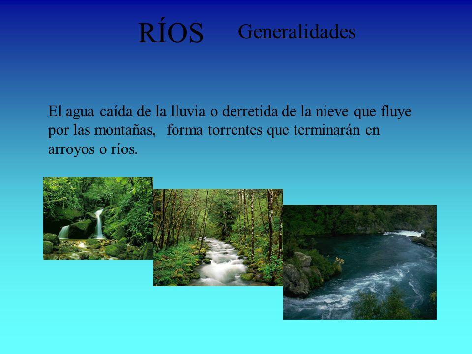RÍOS Generalidades El agua caída de la lluvia o derretida de la nieve que fluye por las montañas, forma torrentes que terminarán en arroyos o ríos.
