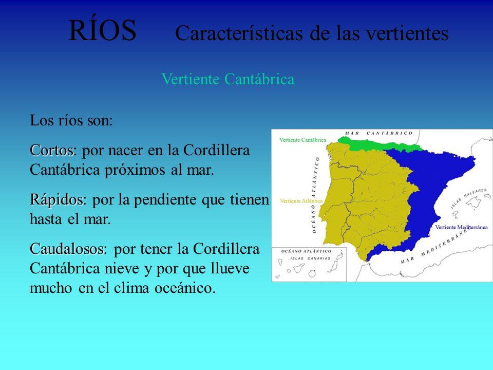 RÍOS Características de las vertientes Vertiente Cantábrica Los ríos son: Cortos Cortos: por nacer en la Cordillera Cantábrica próximos al mar. Rápido
