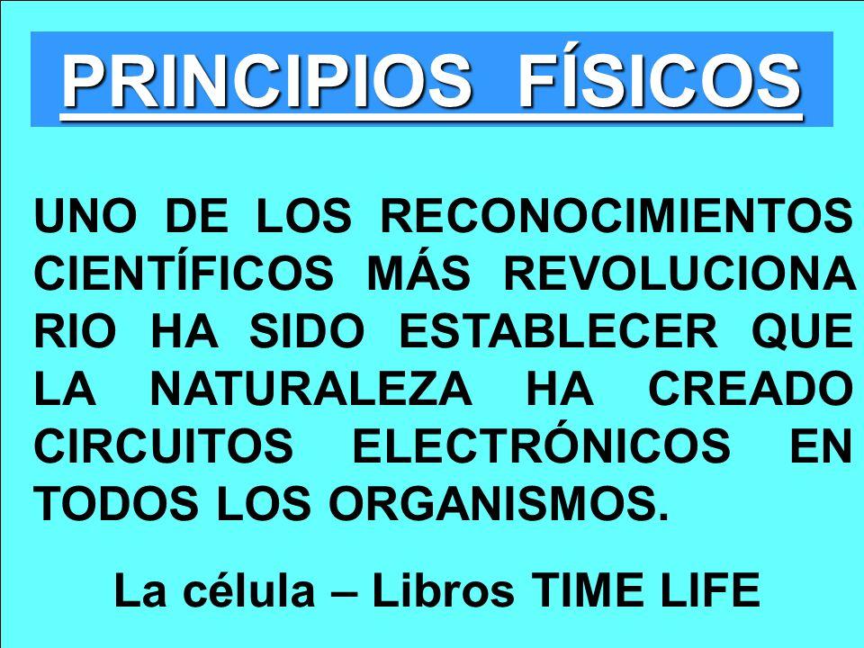 PRINCIPIOS FÍSICOS UNO DE LOS RECONOCIMIENTOS CIENTÍFICOS MÁS REVOLUCIONA RIO HA SIDO ESTABLECER QUE LA NATURALEZA HA CREADO CIRCUITOS ELECTRÓNICOS EN