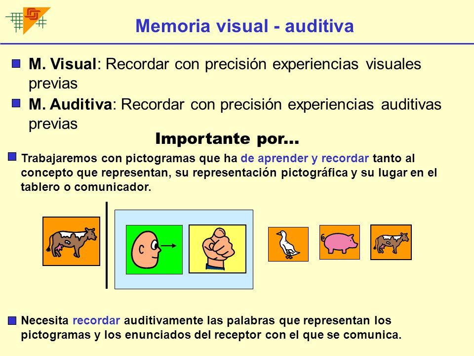 Memoria visual secuencial M.