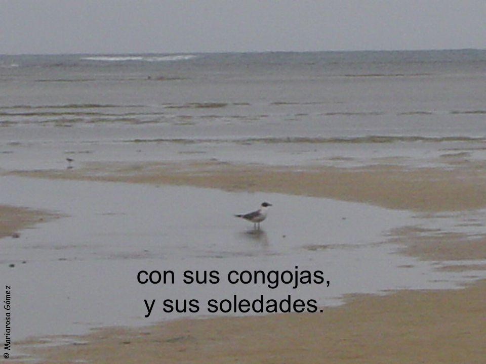 © Mariarosa Gómez con sus congojas, y sus soledades.