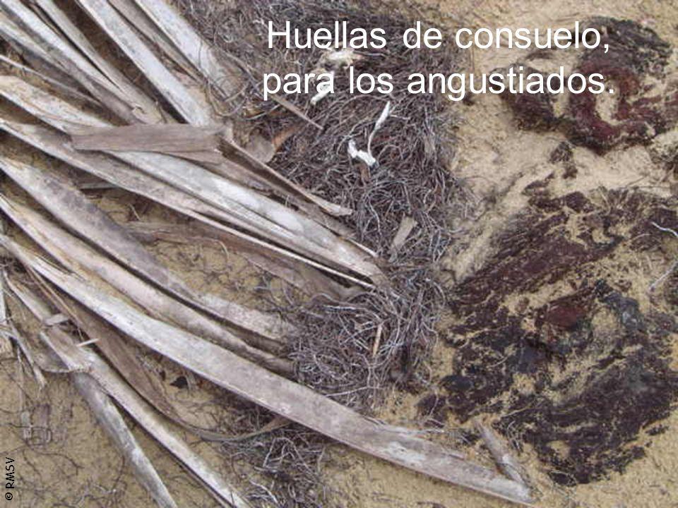 © RMSV Huellas de consuelo, para los angustiados.