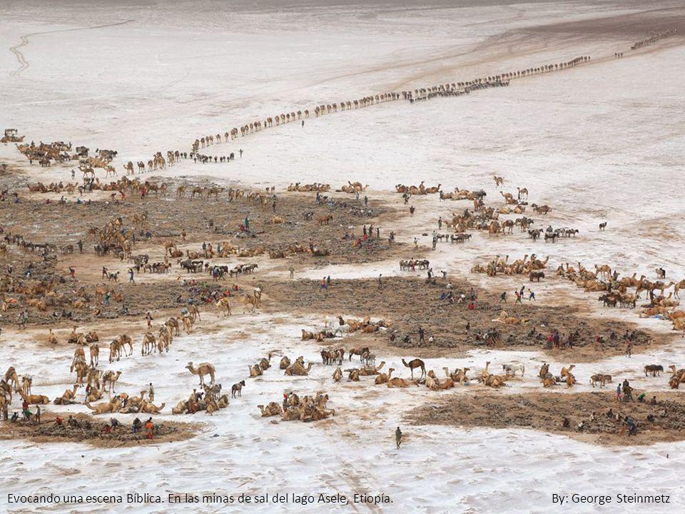 Evocando una escena Bíblica. En las minas de sal del lago Asele, Etiopía. By: George Steinmetz