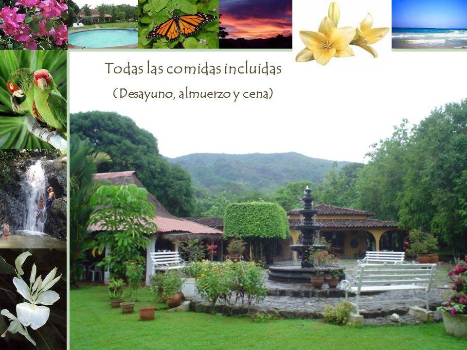 Panamá e m a i l : h o s t a l h d v ic @ c w p a n a m a. n e t Un paraíso… a solo 40 minutos de la Ciudad rodeado de montañas