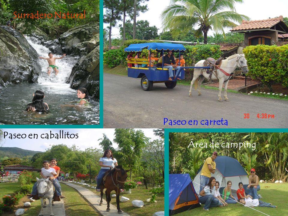 Caballos, hamacas y un entretenido tour en carreta a la lechería, el río y paseo por el pueblo.