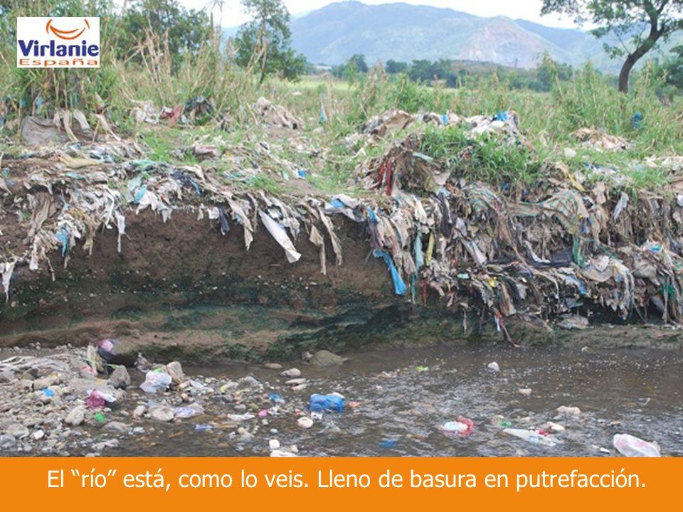 El río está, como lo veis. Lleno de basura en putrefacción.
