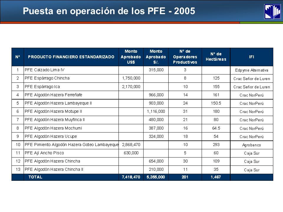 Puesta en operación de los PFE - 2005