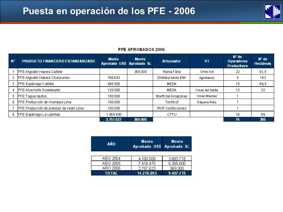 Puesta en operación de los PFE - 2006