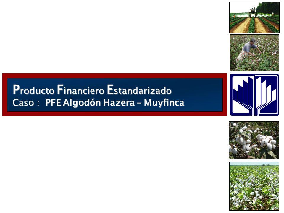 P roducto F inanciero E standarizado Caso : PFE Algodón Hazera – Muyfinca