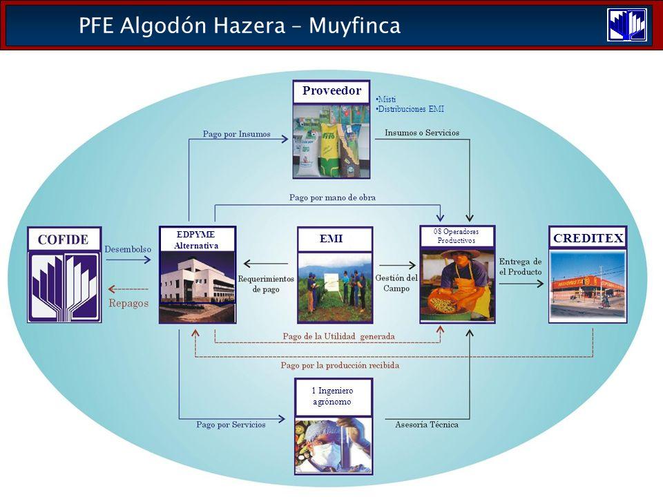 PFE Algodón Hazera – Muyfinca EMI CREDITEX 08 Operadores Productivos 1 Ingeniero agrónomo Proveedor Misti Distribuciones EMI EDPYME Alternativa