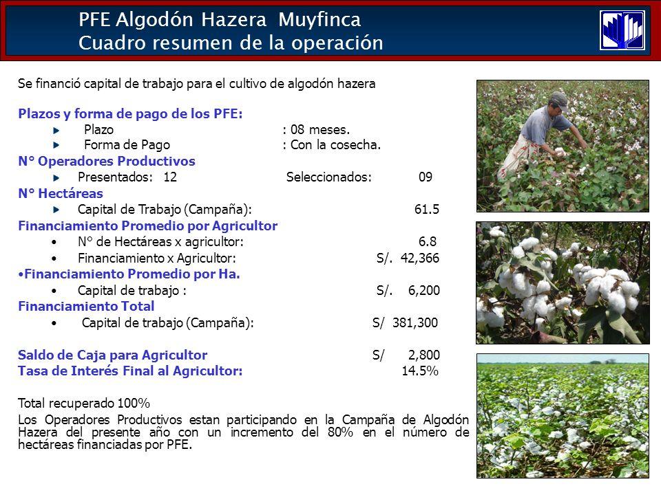 PFE Algodón Hazera Muyfinca Cuadro resumen de la operación Se financió capital de trabajo para el cultivo de algodón hazera Plazos y forma de pago de los PFE: Plazo: 08 meses.