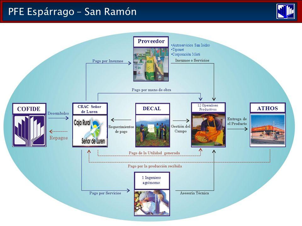 PFE Espárrago – San Ramón DECAL ATHOS 12 Operadores Productivos 1 Ingeniero agrónomo Proveedor Autoservicios San Isidro Tiponet Corporación Misti CRAC Señor de Luren