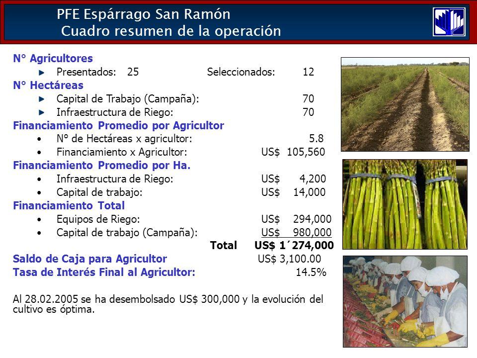 PFE Espárrago San Ramón Cuadro resumen de la operación N° Agricultores Presentados: 25 Seleccionados: 12 N° Hectáreas Capital de Trabajo (Campaña): 70 Infraestructura de Riego: 70 Financiamiento Promedio por Agricultor N° de Hectáreas x agricultor: 5.8 Financiamiento x Agricultor: US$ 105,560 Financiamiento Promedio por Ha.