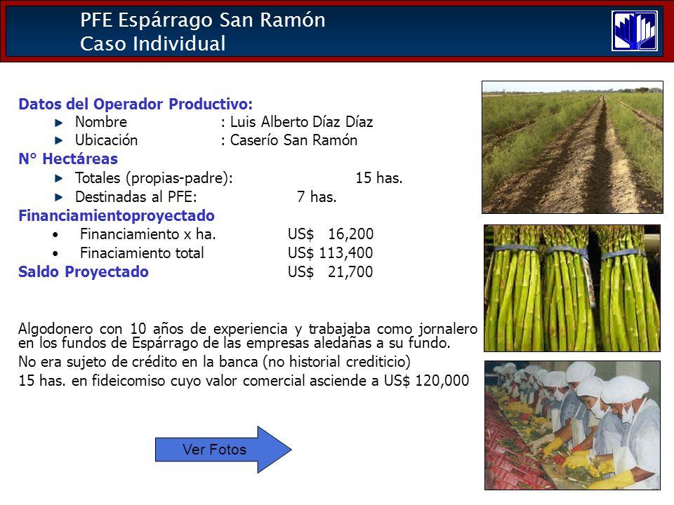 PFE Espárrago San Ramón Caso Individual Datos del Operador Productivo: Nombre: Luis Alberto Díaz Díaz Ubicación: Caserío San Ramón N° Hectáreas Totales (propias-padre): 15 has.
