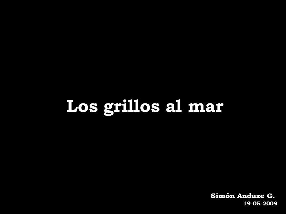 Los grillos al mar Simón Anduze G. 19-05-2009