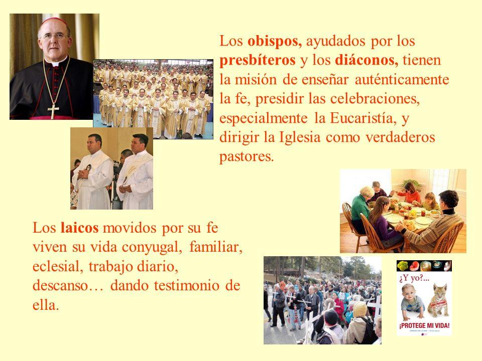 Los obispos, ayudados por los presbíteros y los diáconos, tienen la misión de enseñar auténticamente la fe, presidir las celebraciones, especialmente