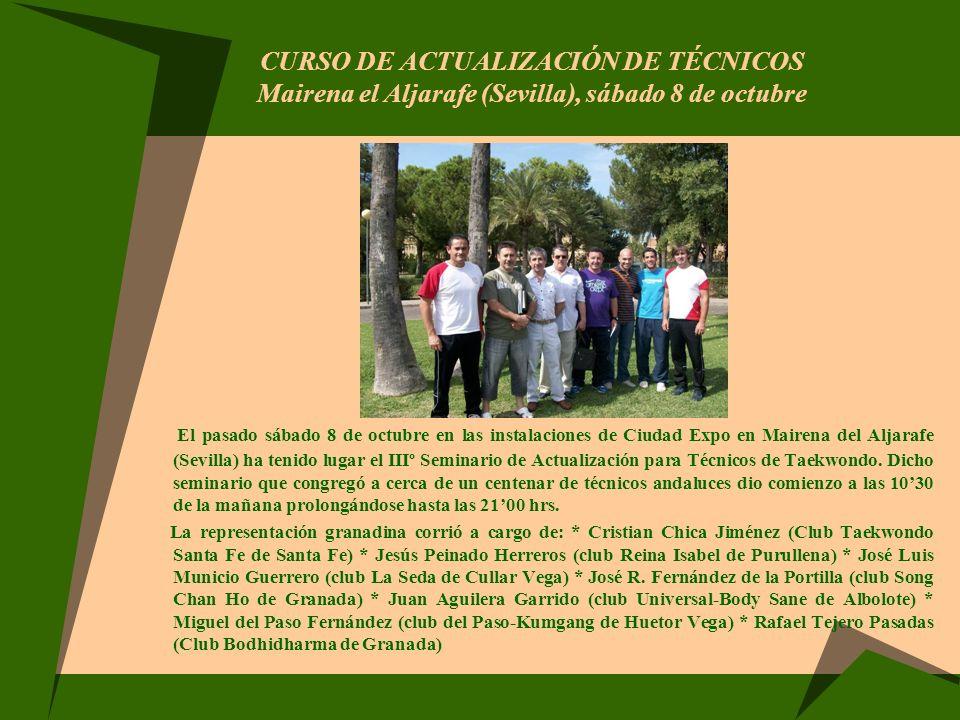 CURSO DE ACTUALIZACIÓN DE TÉCNICOS Mairena el Aljarafe (Sevilla), sábado 8 de octubre El pasado sábado 8 de octubre en las instalaciones de Ciudad Exp