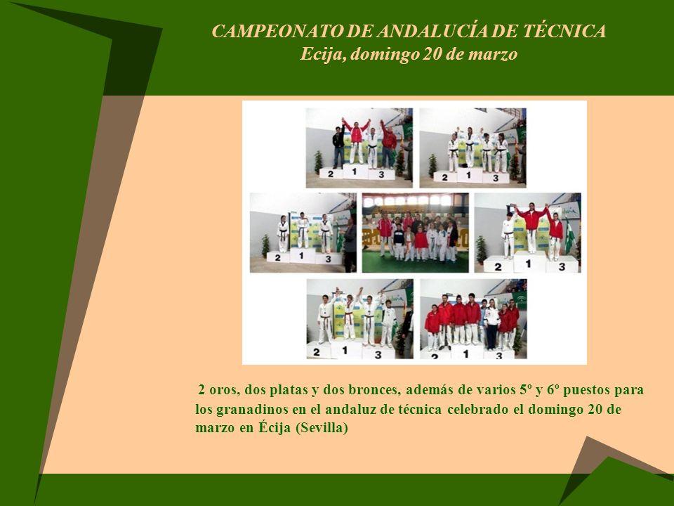 CURSO DE ACTUALIZACIÓN DE TÉCNICOS Mairena el Aljarafe (Sevilla), sábado 8 de octubre El pasado sábado 8 de octubre en las instalaciones de Ciudad Expo en Mairena del Aljarafe (Sevilla) ha tenido lugar el IIIº Seminario de Actualización para Técnicos de Taekwondo.