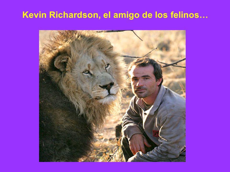 Kevin Richardson, el amigo de los felinos…