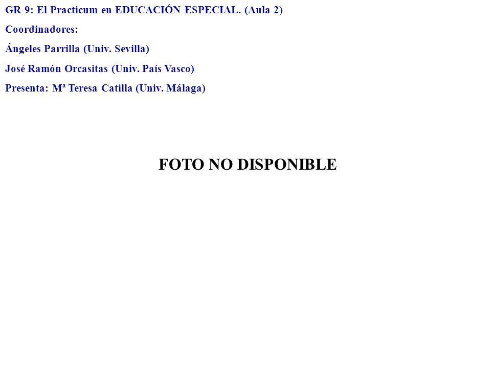 GR-9: El Practicum en EDUCACIÓN ESPECIAL. (Aula 2) Coordinadores: Ángeles Parrilla (Univ. Sevilla) José Ramón Orcasitas (Univ. País Vasco) Presenta: M