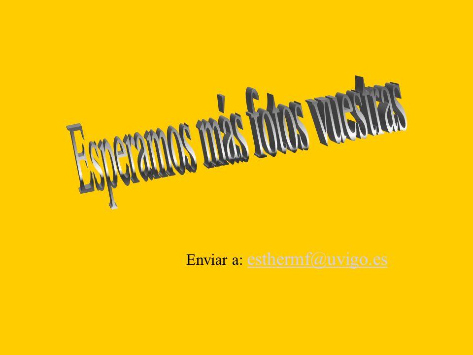 Enviar a: esthermf@uvigo.es esthermf@uvigo.es
