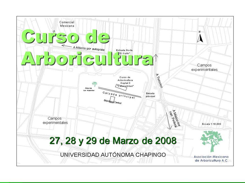 Curso de Arboricultura 27, 28 y 29 de Marzo de 2008