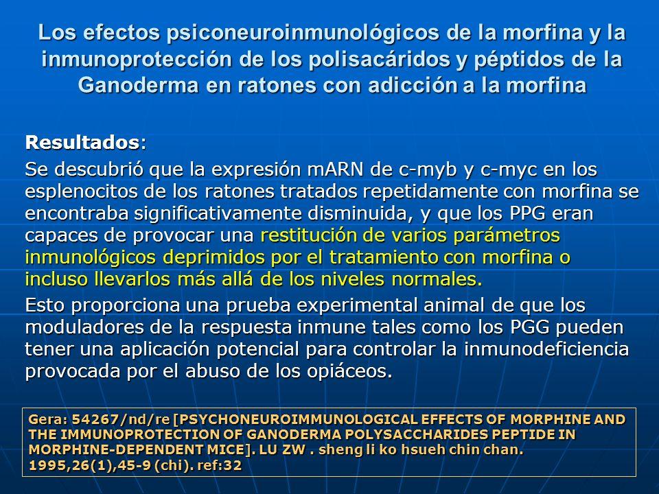 Los efectos psiconeuroinmunológicos de la morfina y la inmunoprotección de los polisacáridos y péptidos de la Ganoderma en ratones con adicción a la m