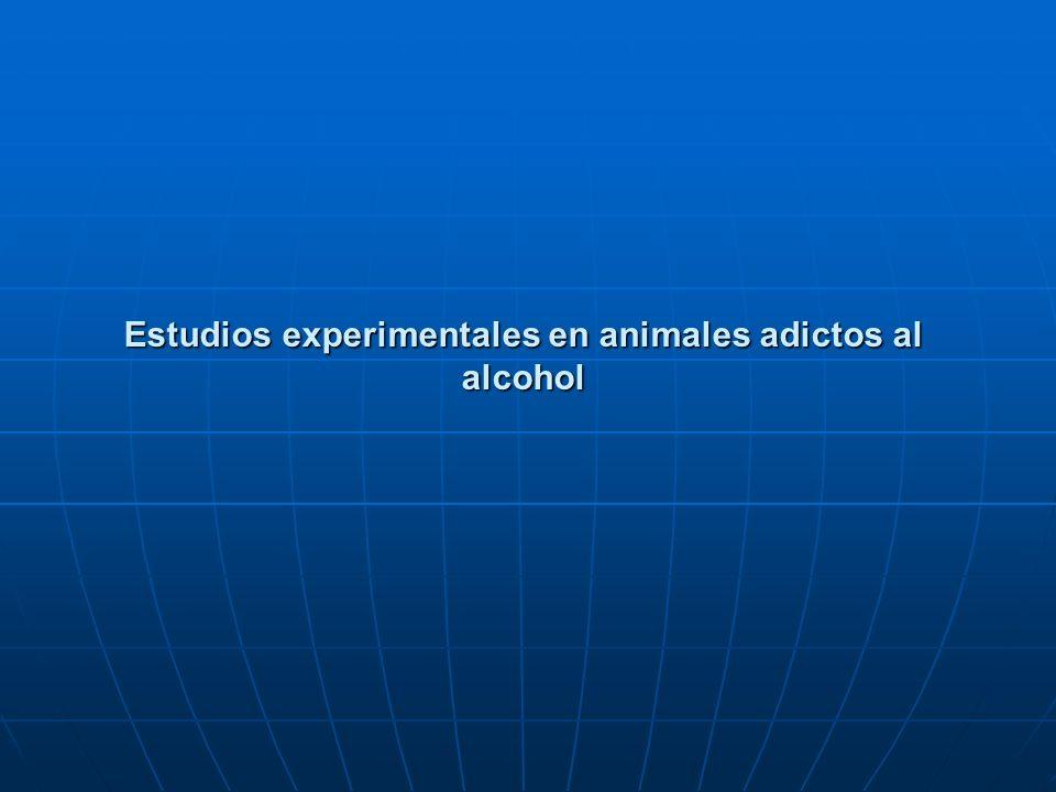 Estudios experimentales en animales adictos al alcohol