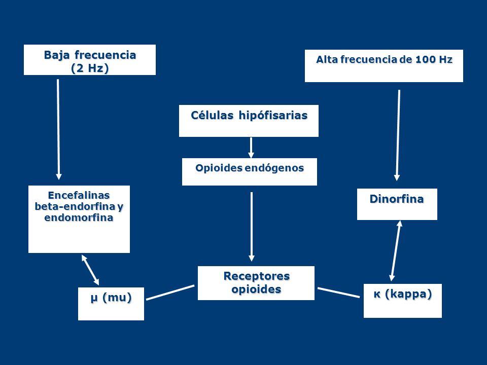 Baja frecuencia (2 Hz) Alta frecuencia de 100 Hz Dinorfina κ (kappa) Receptores opioides μ (mu) Células hipófisarias Opioides endógenos Encefalinas be