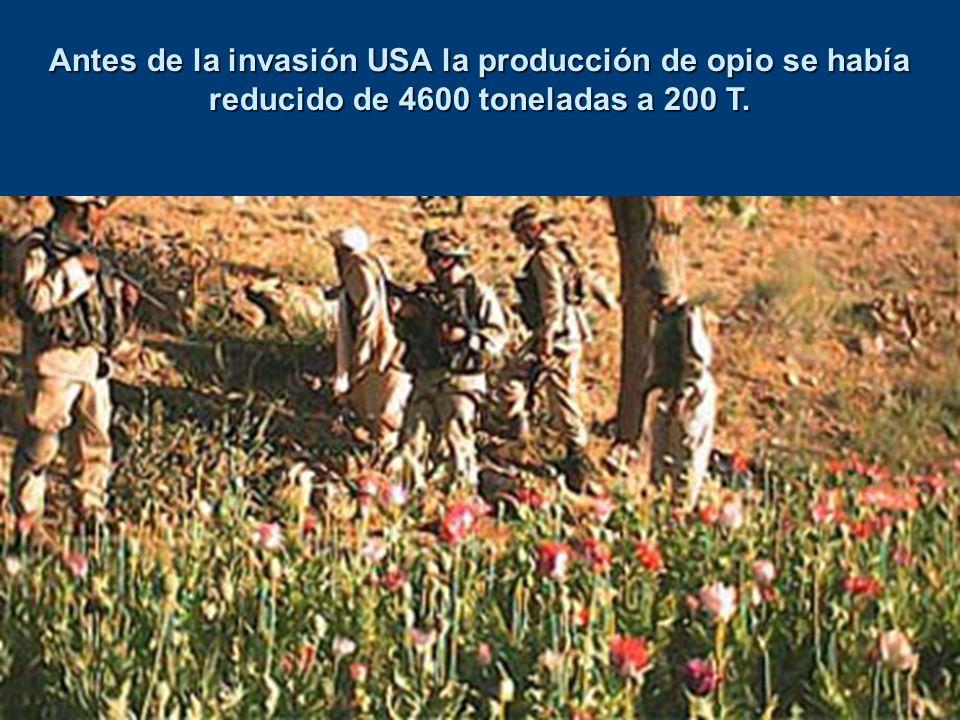 Antes de la invasión USA la producción de opio se había reducido de 4600 toneladas a 200 T.