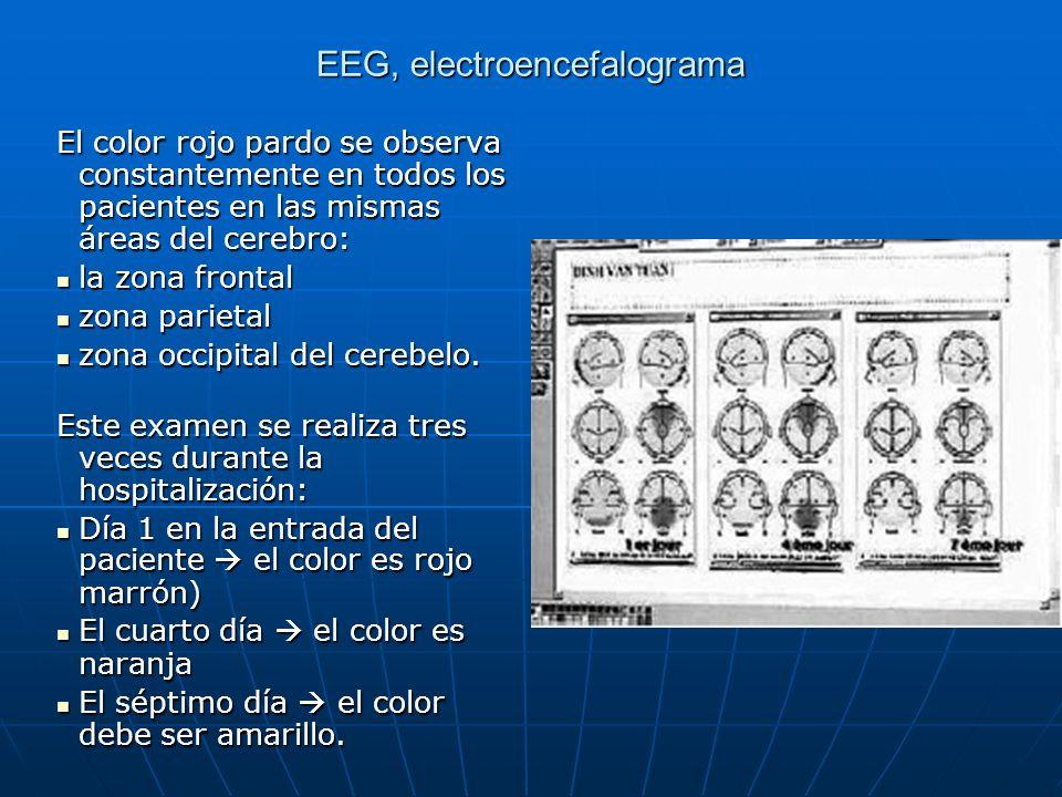 EEG, electroencefalograma El color rojo pardo se observa constantemente en todos los pacientes en las mismas áreas del cerebro: la zona frontal la zon