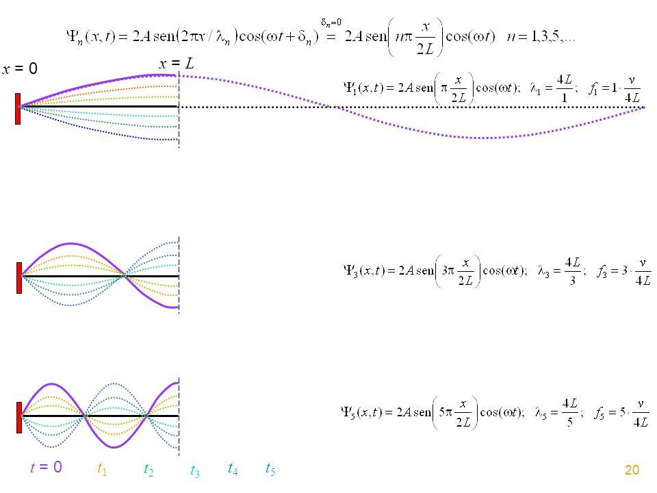 x = 0 x = L t = 0 t1t1 t2t2 t3t3 t4t4 t5t5 20