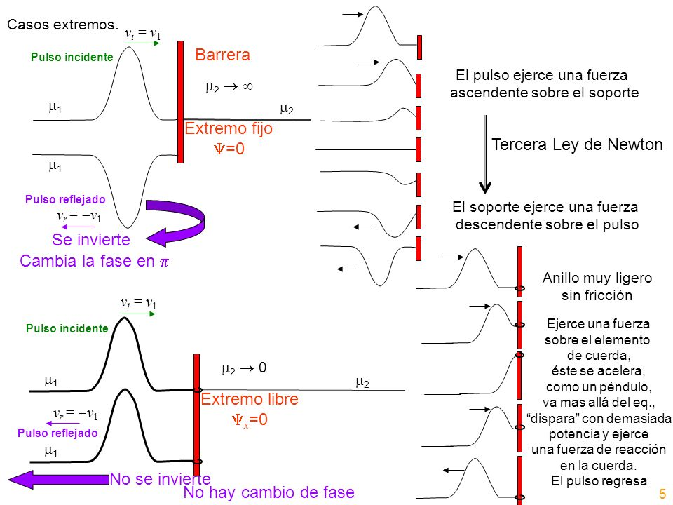 Onda Propagante Armónica Onda Estacionaria Movimiento armónico simple Frecuencia angular de vibración Idéntica amplitud A (todos los puntos pasan por las mismas posiciones a distintos tiempos) x fijo Movimiento armónico simple (excepto nodos) Frecuencia angular de vibración Amplitud dependiente de la posición 2A|sen(kx+ )| x fijo La energía no se transporta (no puede fluir más allá de los nodos) Transporta energía Para cada elemento dx Energía cinética=energía potencial (Máximo de una es máximo de la otra, mínimo de una es mínimo de la otra) Para cada elemento dx Alternancia entre energía cinética y potencial (Máx.