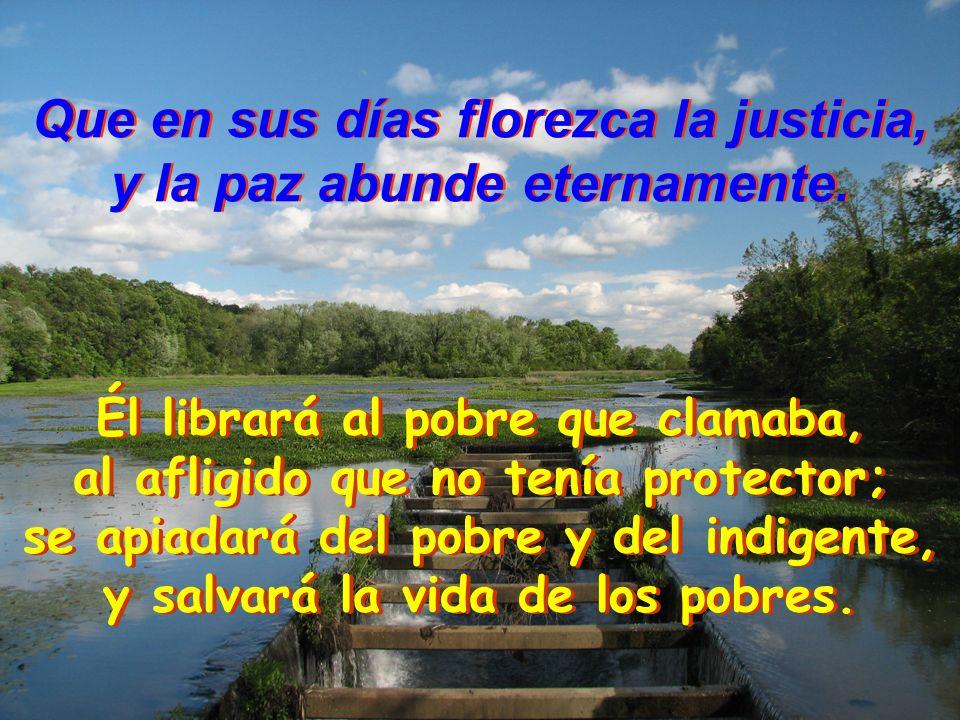 Que en sus días florezca la justicia, y la paz abunde eternamente. Que en sus días florezca la justicia, y la paz abunde eternamente. Que en sus días