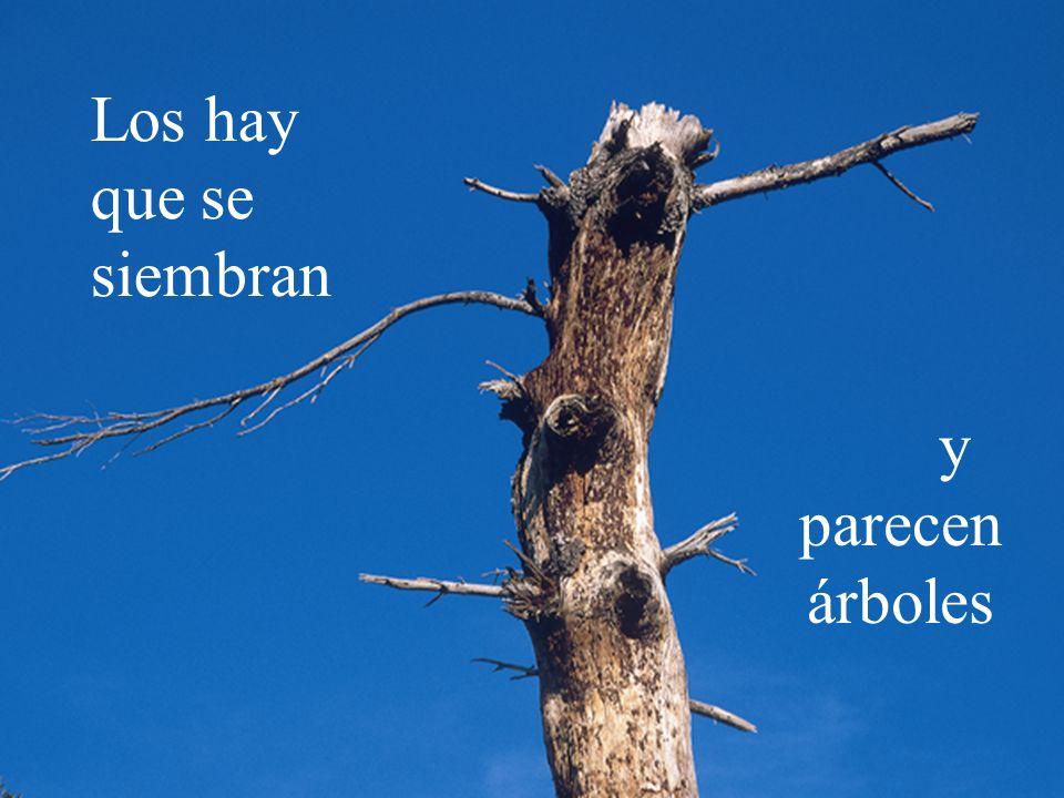 Hi ha homes que se sembren y parecen árboles Los hay que se siembran