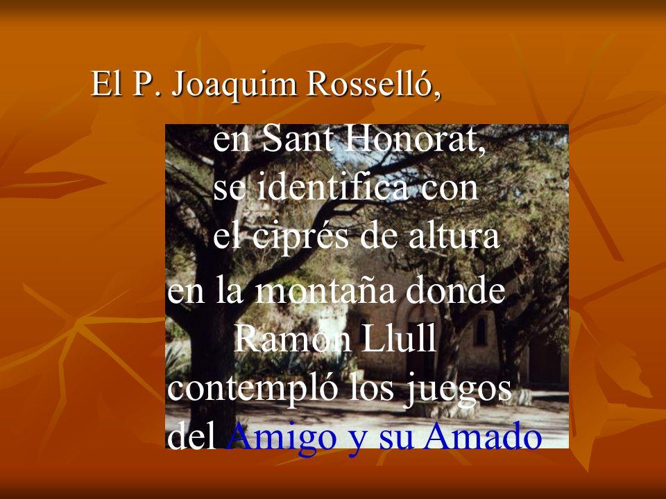 En Santa María de la Real, es el surtidor con musgo, derrama lágrimas perennes sobre los nenúfares contemplativos.