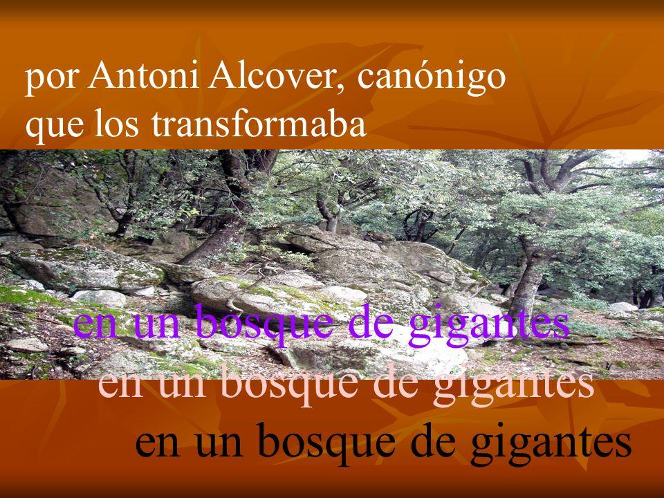 i Antoni Alcover, que els convertia en un bosc de gegants.