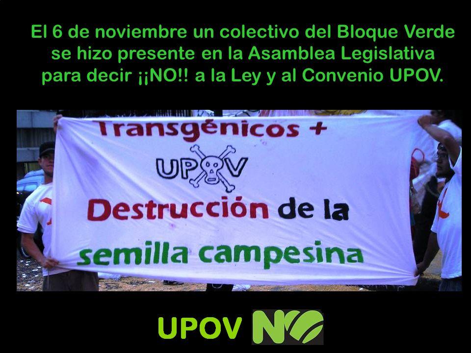 El 6 de noviembre un colectivo del Bloque Verde se hizo presente en la Asamblea Legislativa para decir ¡¡NO!.