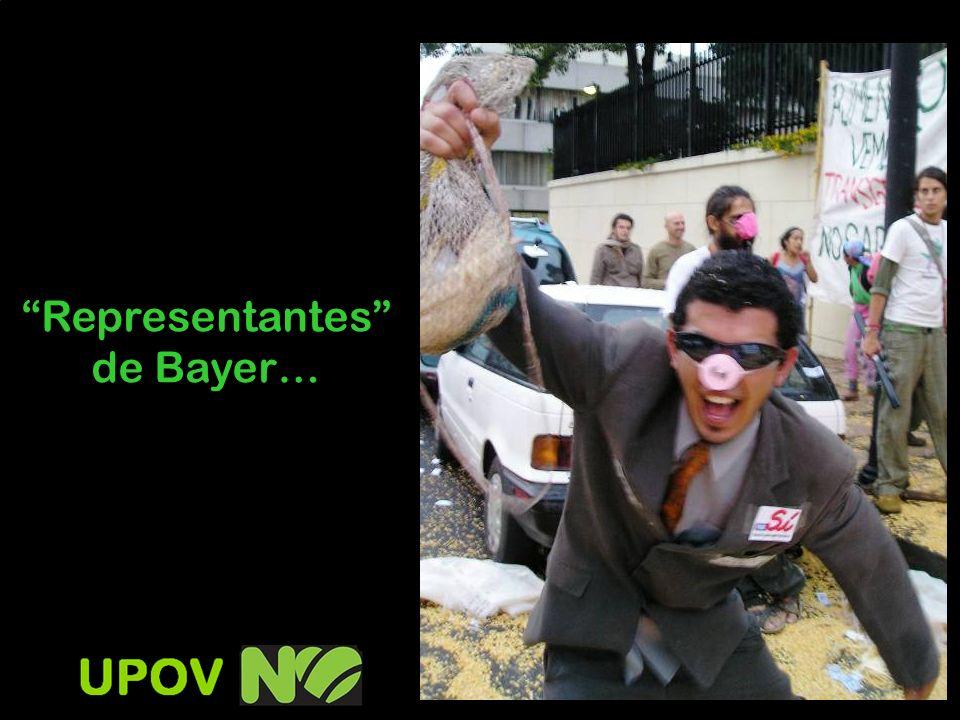 Representantes de Bayer…