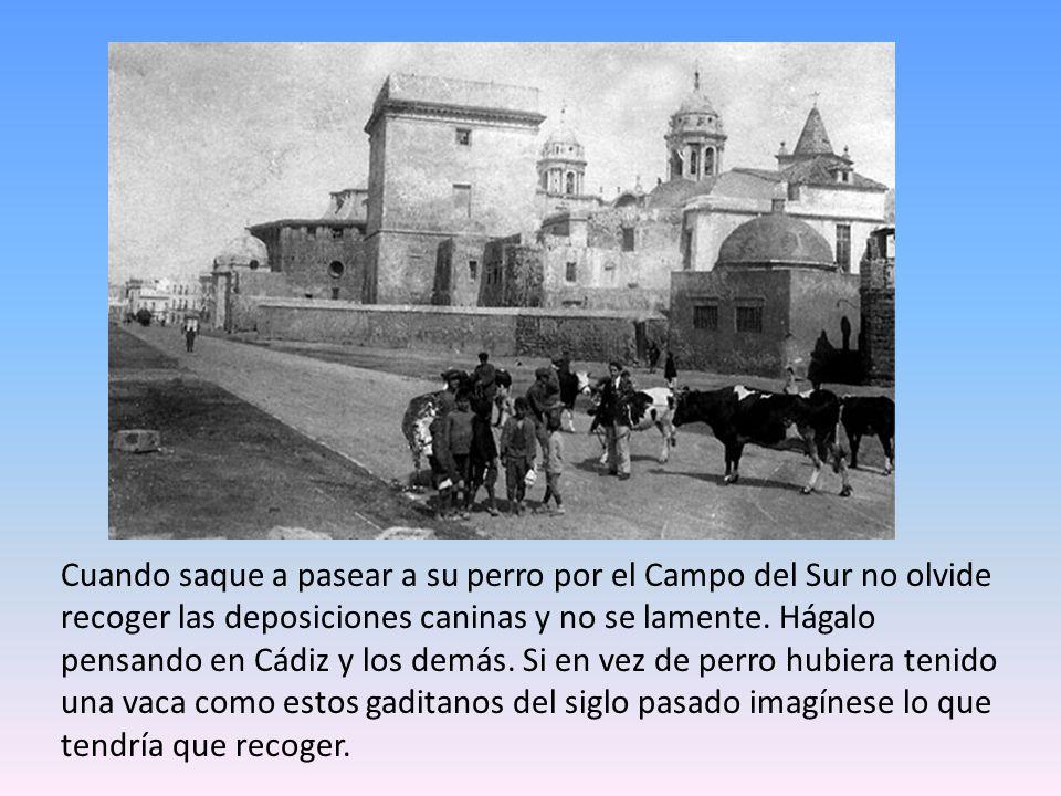 Aquí aparece Cádiz igual que una feria,con farolillos.