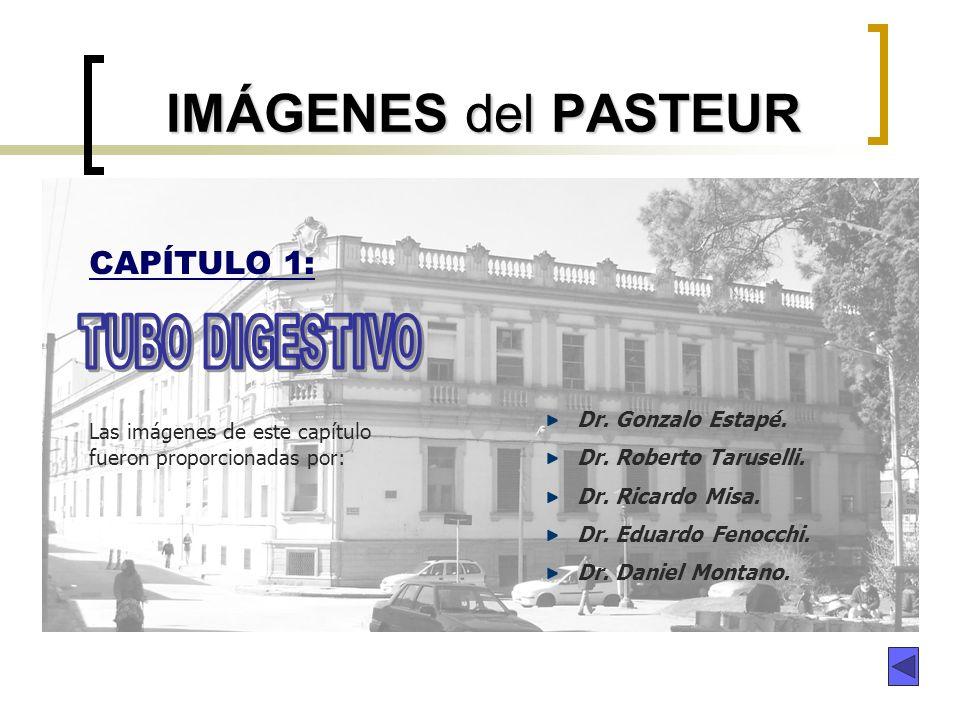 IMÁGENES del PASTEUR CAPÍTULO 1: Las imágenes de este capítulo fueron proporcionadas por: Dr. Gonzalo Estapé. Dr. Roberto Taruselli. Dr. Ricardo Misa.