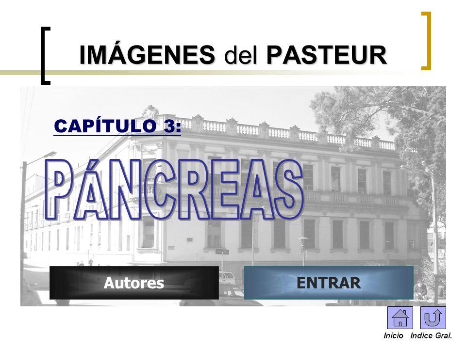 ENTRARAutores IMÁGENES del PASTEUR CAPÍTULO 3: Inicio Indice Gral.