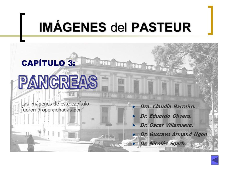 IMÁGENES del PASTEUR CAPÍTULO 3: Dra. Claudia Barreiro. Dr. Eduardo Olivera. Dr. Oscar Villanueva. Dr. Gustavo Armand Ugon Dr. Nicolás Sgarb. Las imág