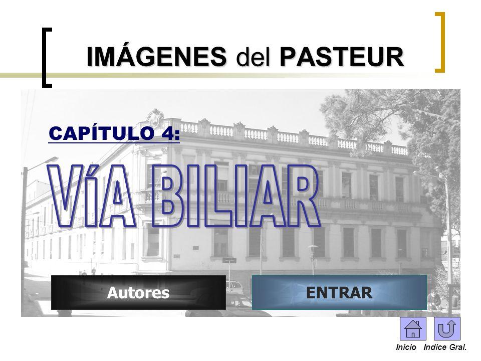 ENTRARAutores IMÁGENES del PASTEUR CAPÍTULO 4: Inicio Indice Gral.